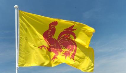 drapeau_wal_1