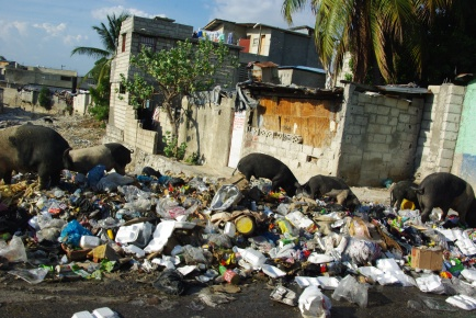 Haiti 1