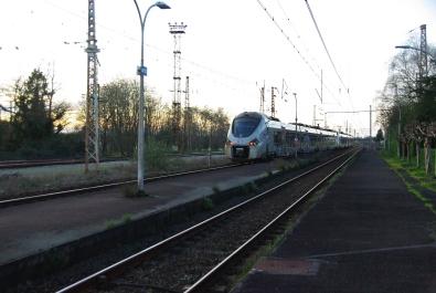 IMGP7679
